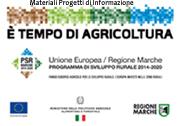 PSR Marche 2014-2020