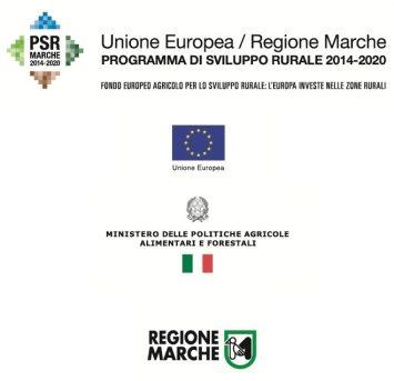 banner psr marche